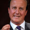 Cameron Bald Patch 'Should Definitely Not Be Used As a Metaphor'