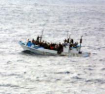Refugees Fleeing Torture 'Wimps'