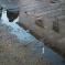 Kensington needs flood defences, too