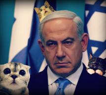"""Netanyahu Murders Kittens """"In Self Defence"""""""