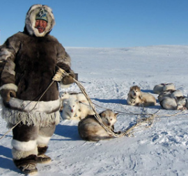 Inuit with his huskies