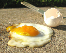 A pavement-fried egg