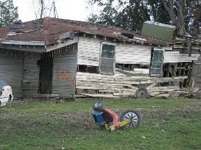 american shanty hut