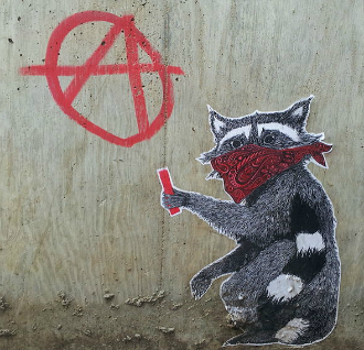 anarchist racoon