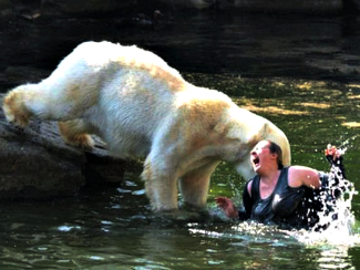 Polar bear eats woman