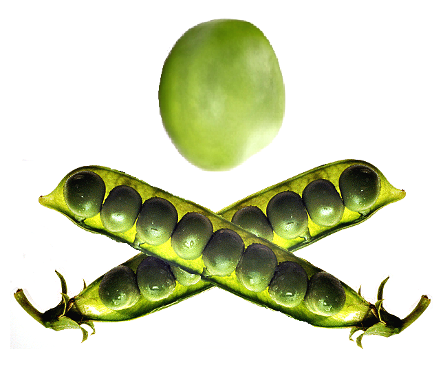 The Jolly Pea